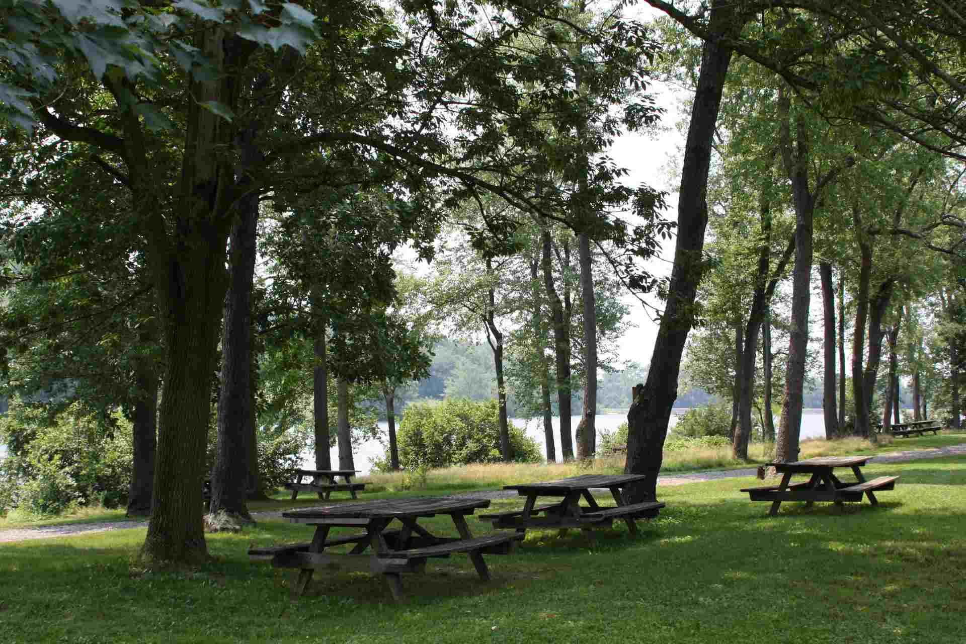 Keystone State Park picnic area