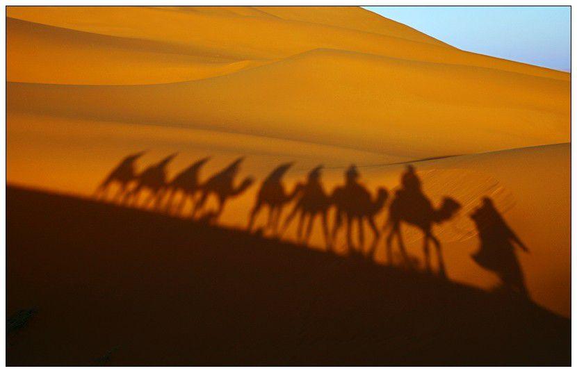 Western Sahara Desert, Morocco
