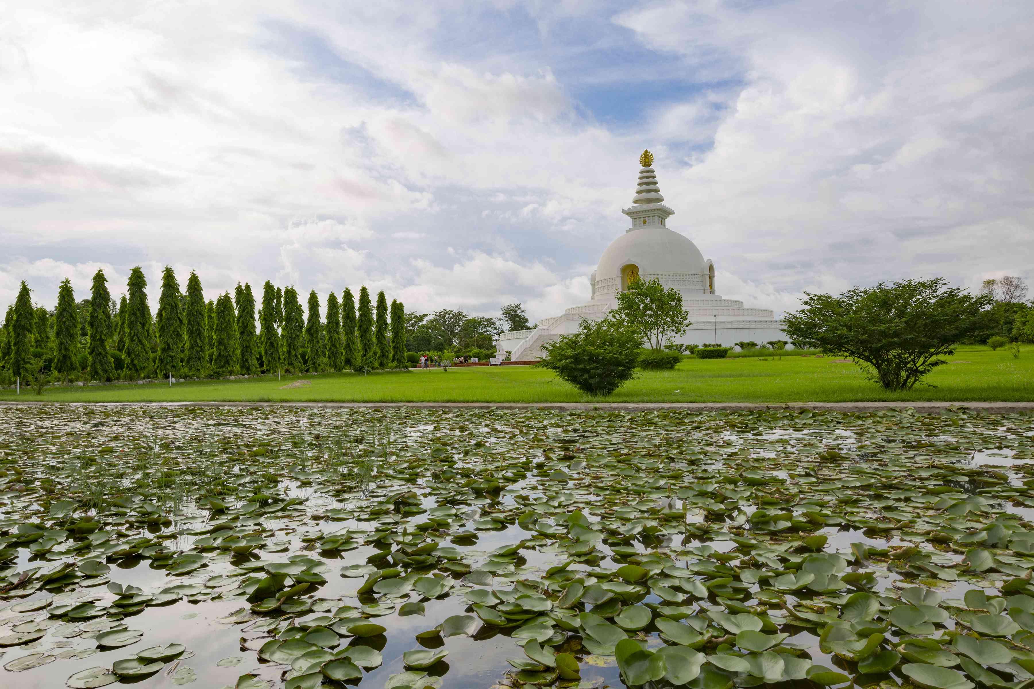 white Buddhist stupa behind a lily pond