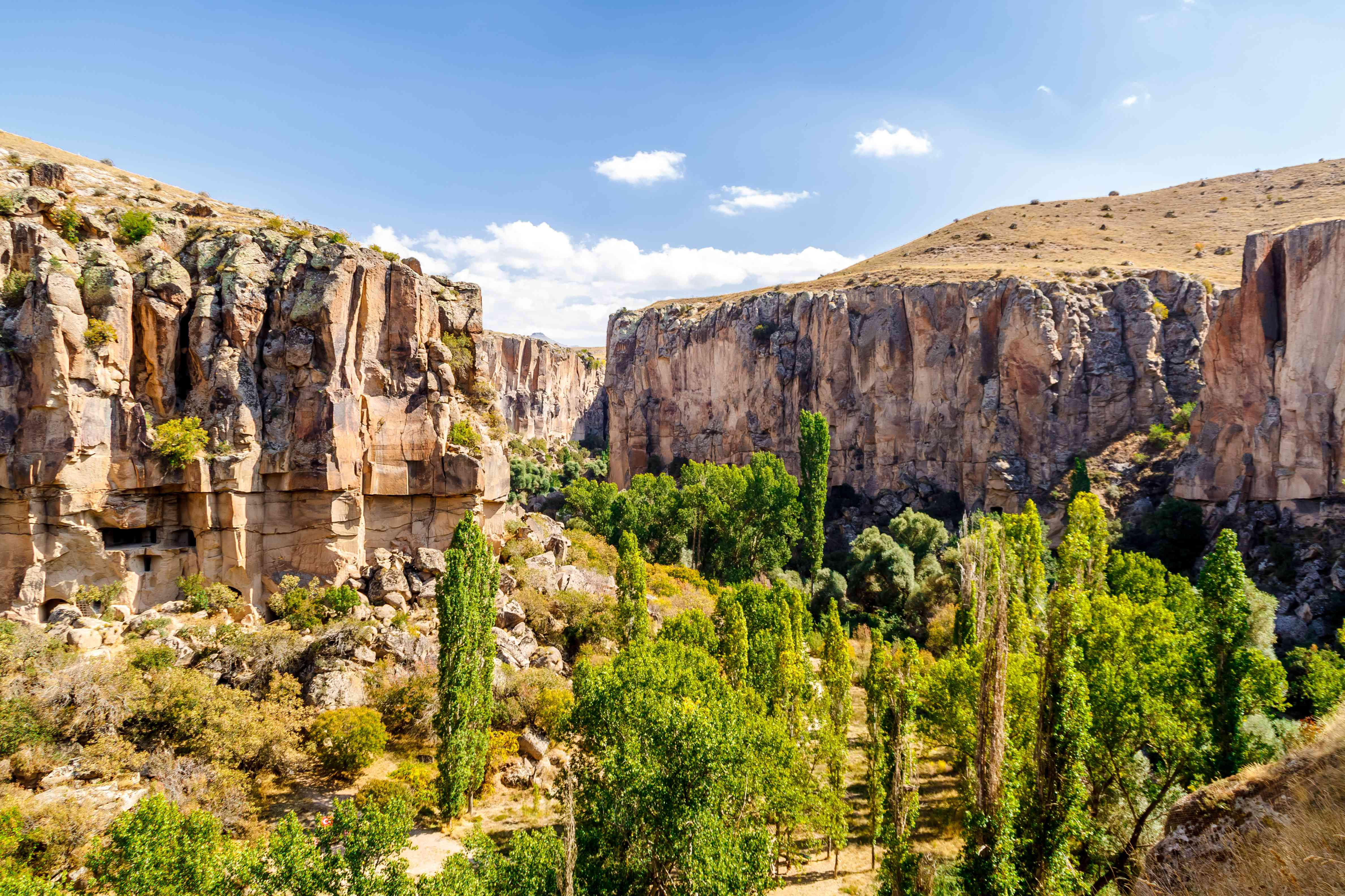 View of trees in the deep gorge of Ihlara Valley in Cappadocia.