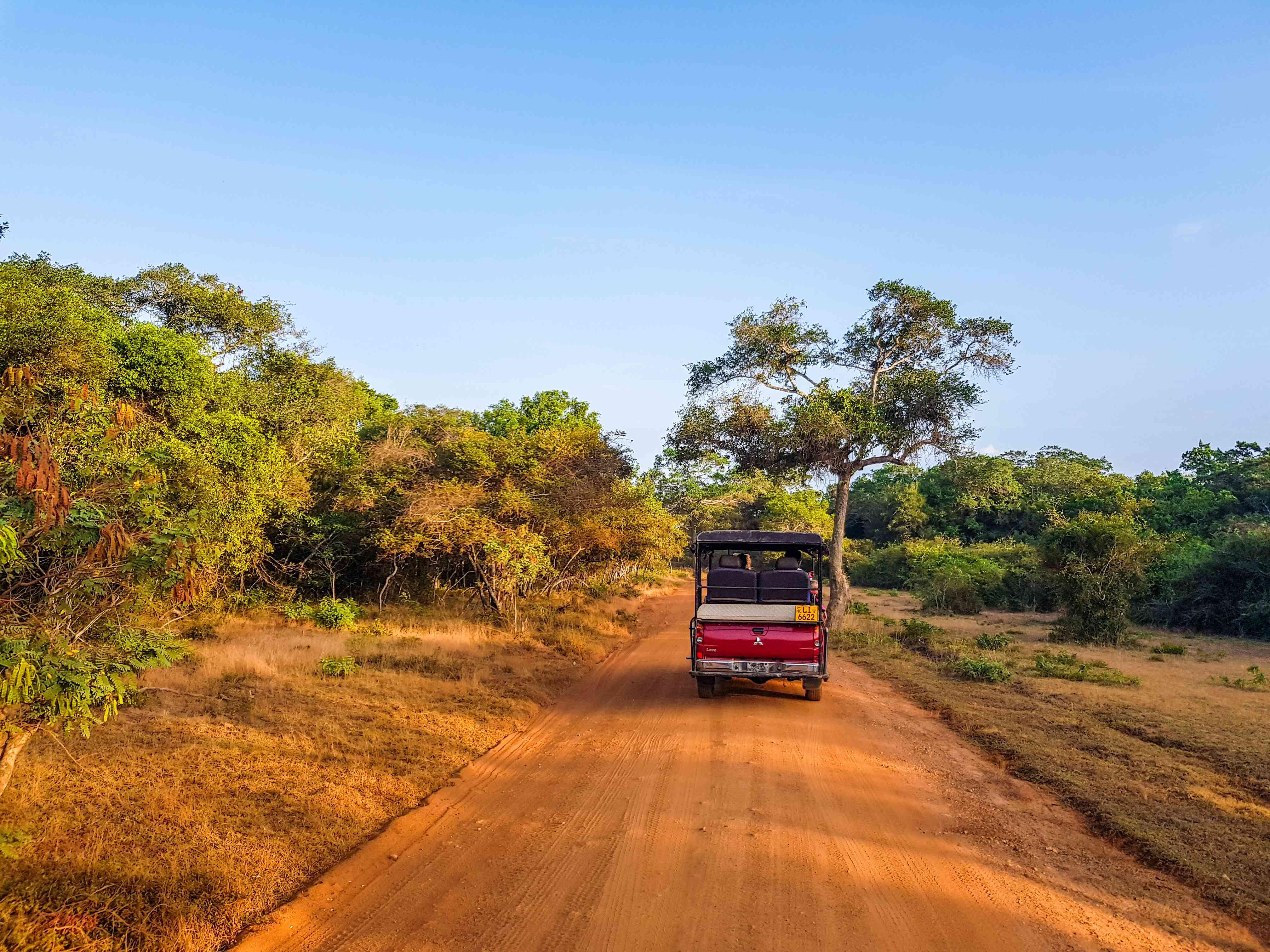 A 4x4 vehicle driving on safari in Sri Lanka
