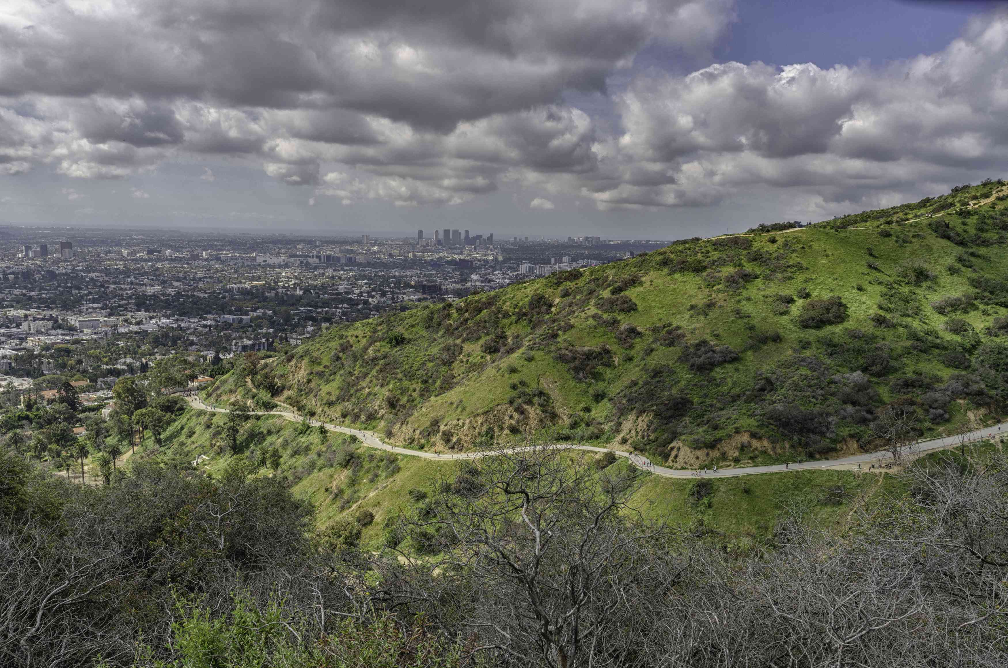Hiking trails in Runyon Canyon, Los Angeles, CA.