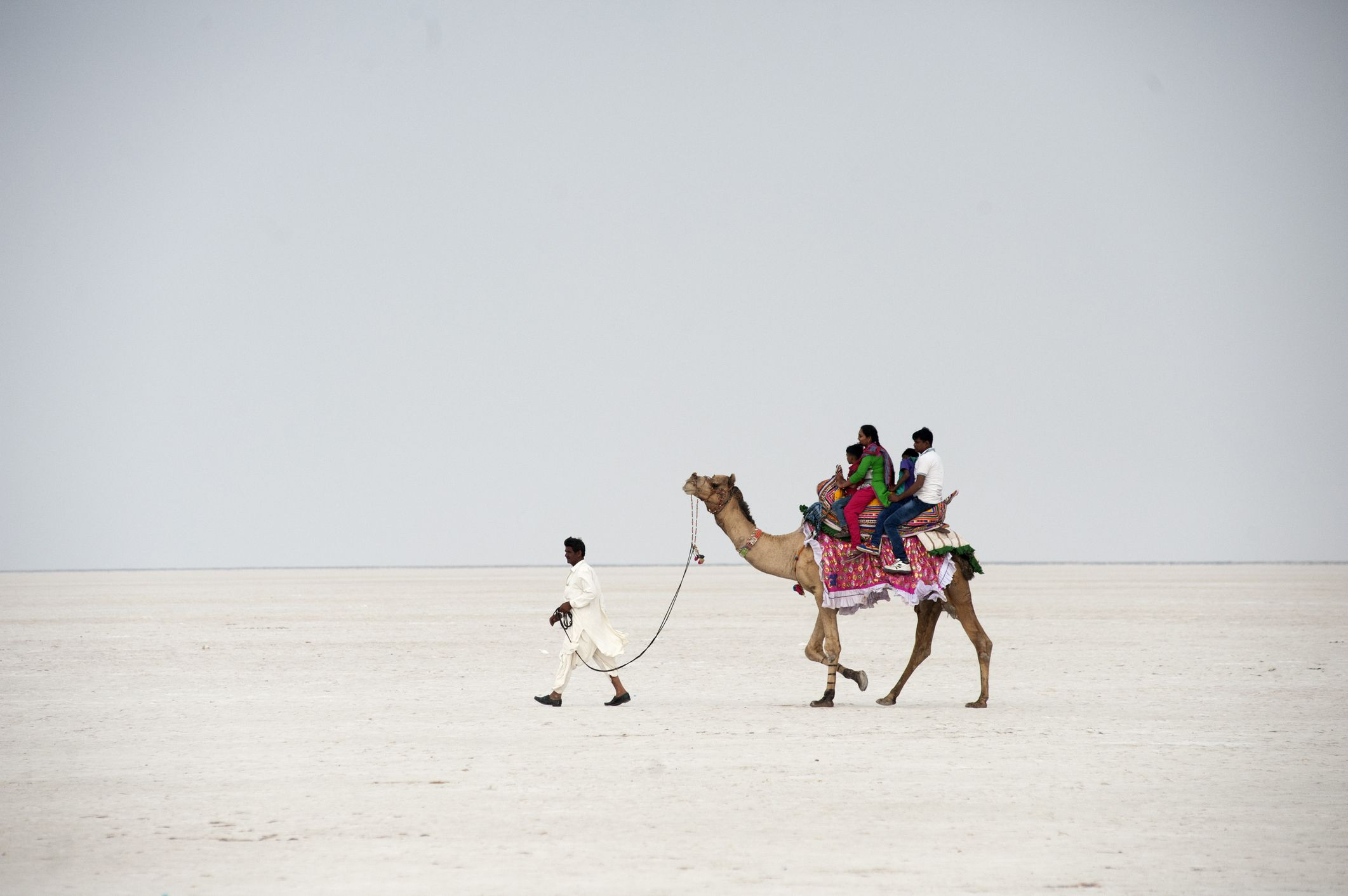 How to Visit Great Rann of Kutch: Essential Travel Guide