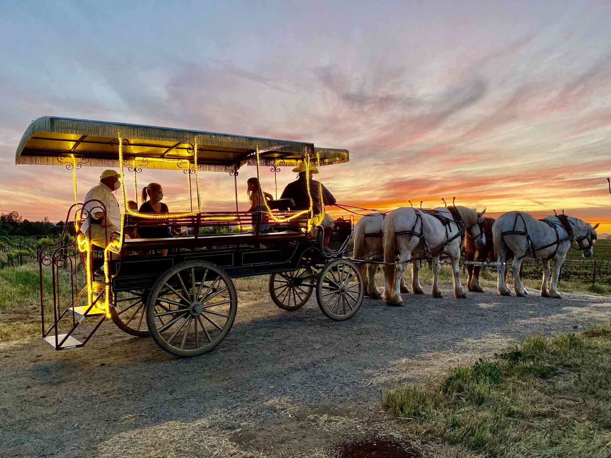 illuminated open-air horse-drawn carriage stopped on a path at sunset