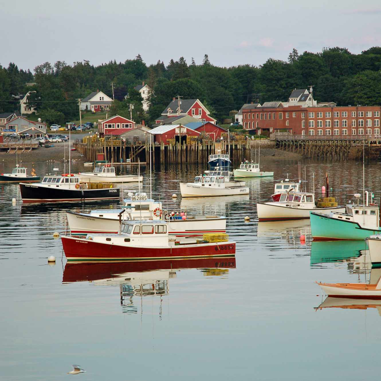 Photo of Lobster Boats in Maine