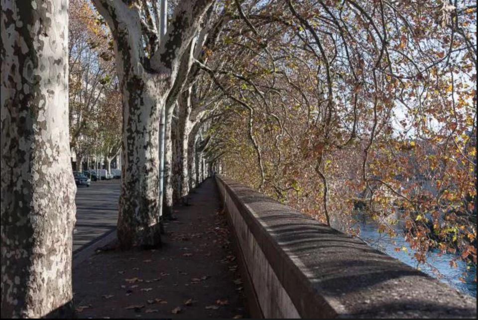Testaccio along the Tiber
