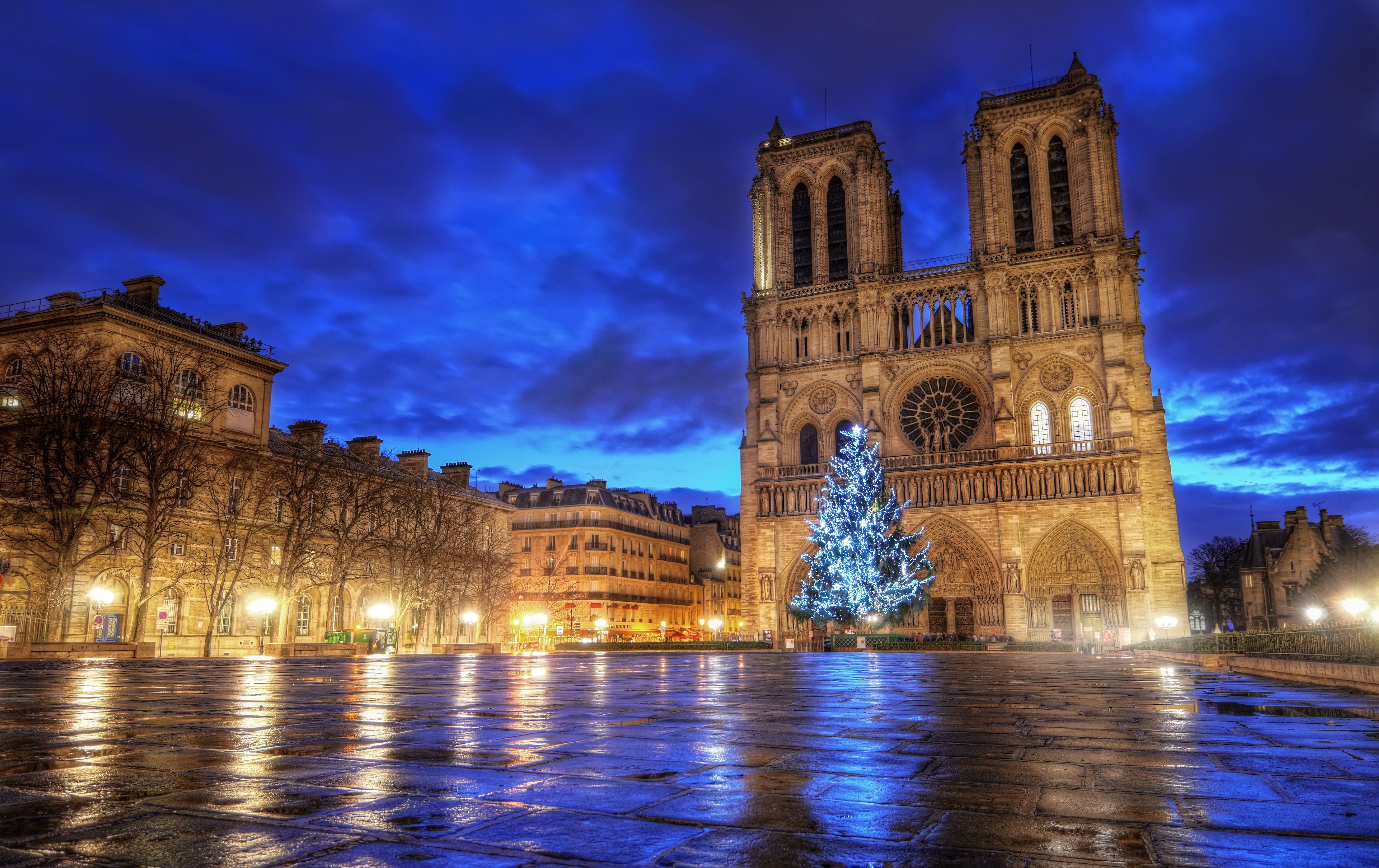 Notre Dame at Christmas time