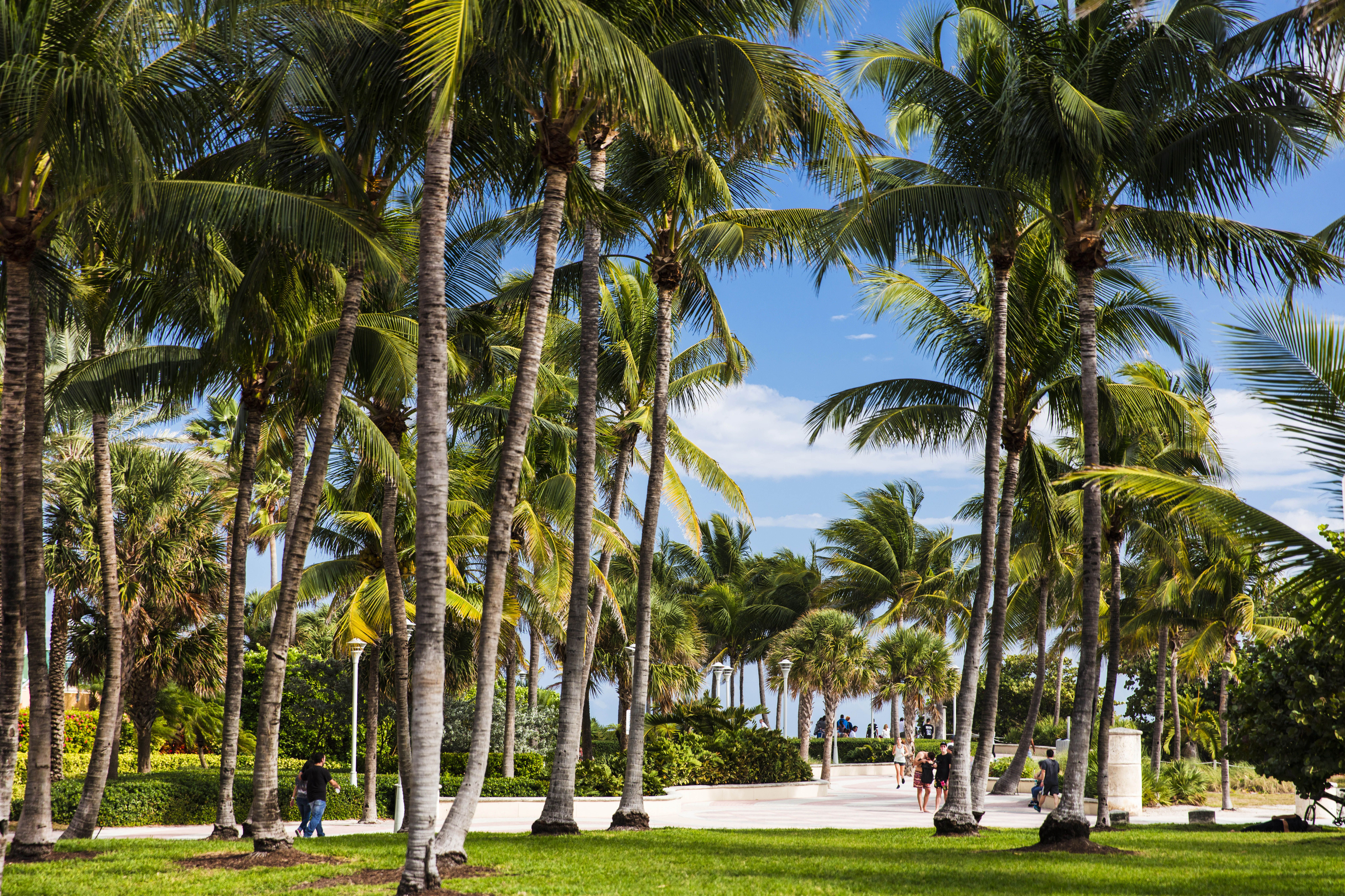 View of South Beach