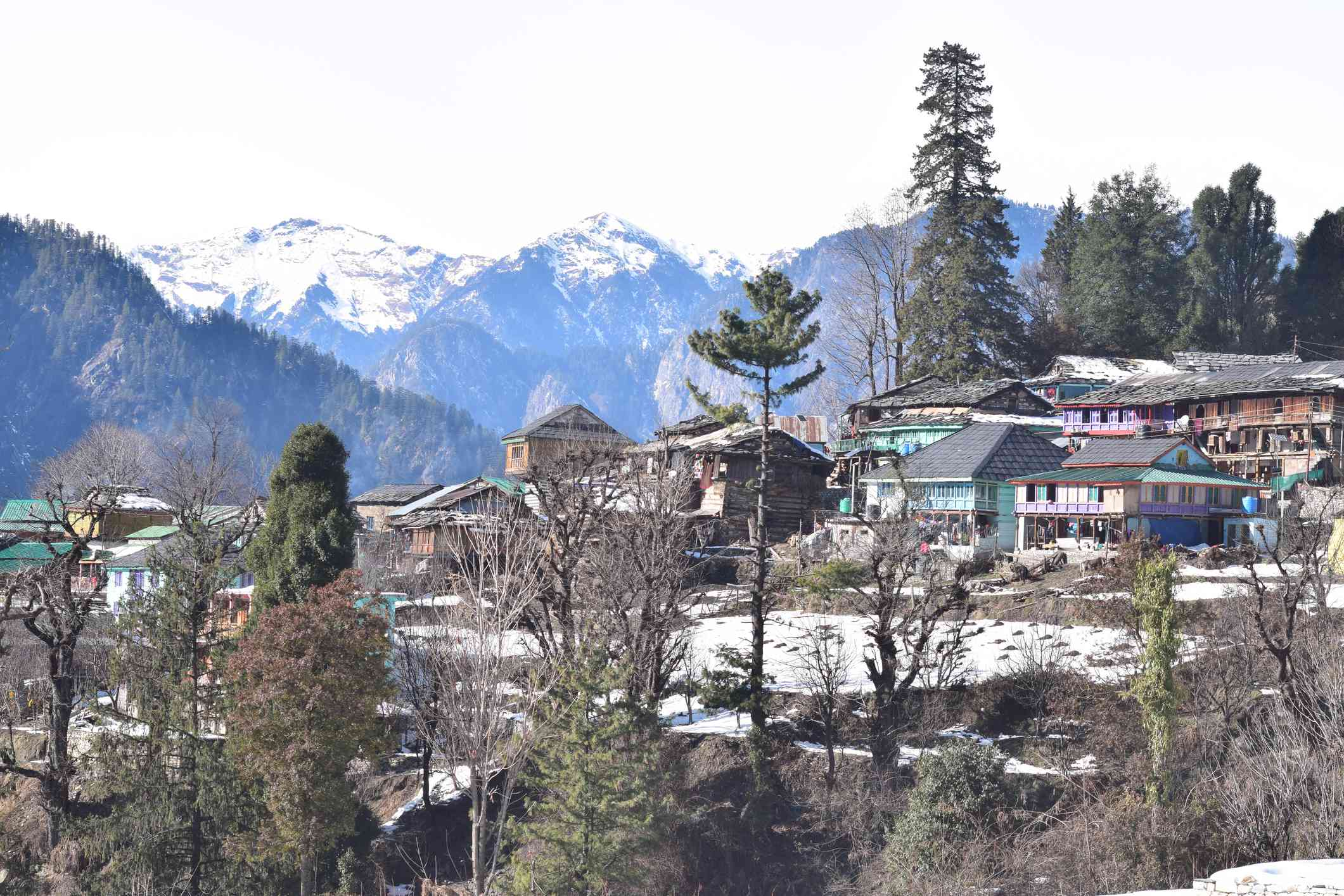 Snow Covered Village In The Parvati Valley