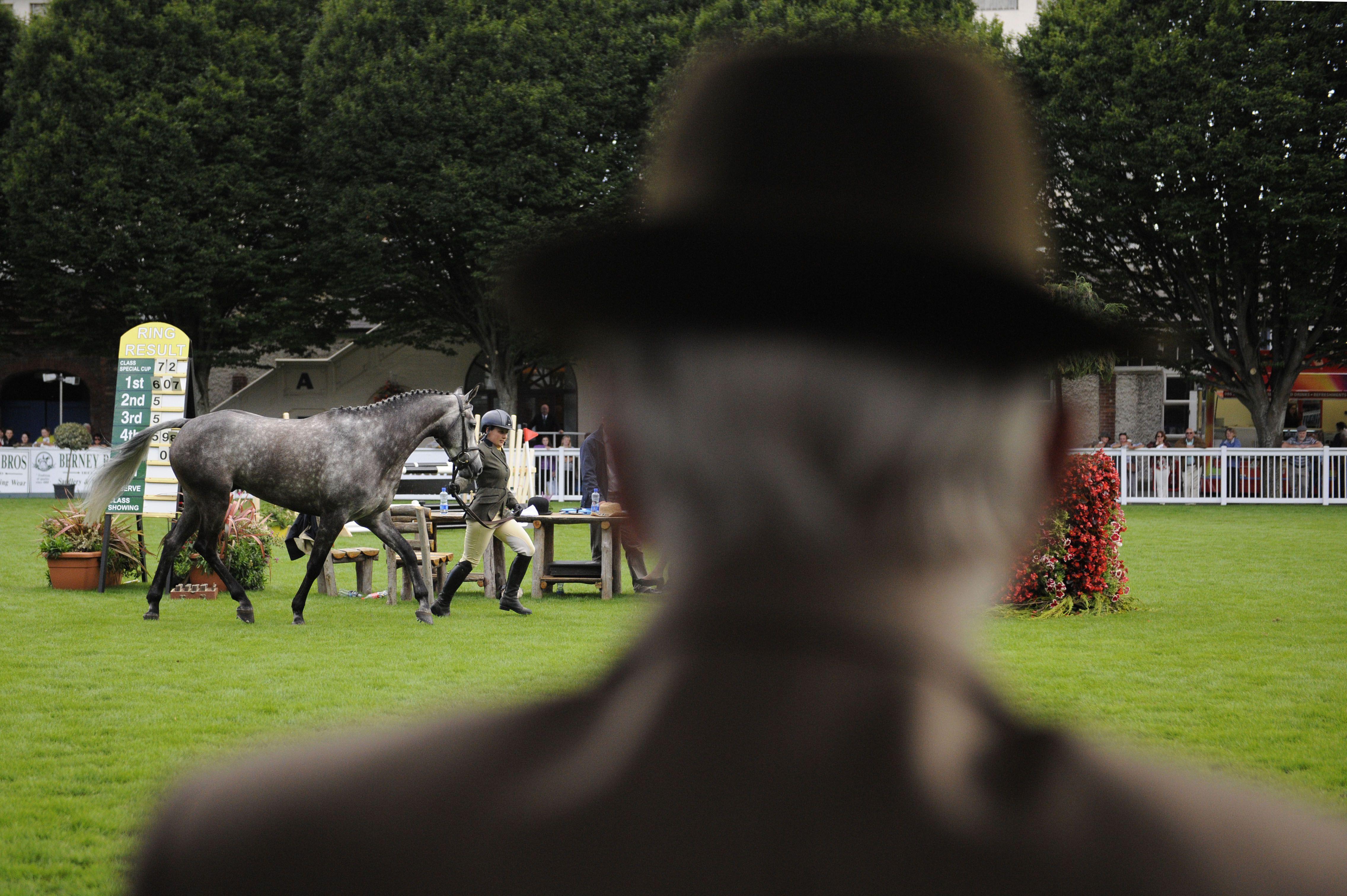 Dublin Horse Show 2014