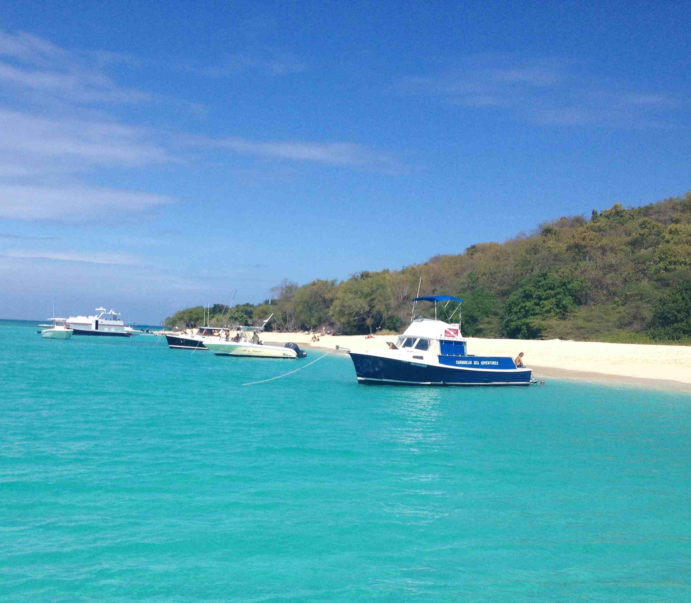 Snorkeling in Buck Island National Monument, St  Croix