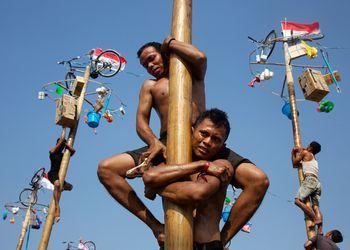 Men climb poles during panjat pinang on Indonesia Independence Day
