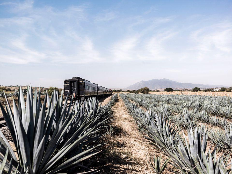 Jose Cuervo Tequila Train