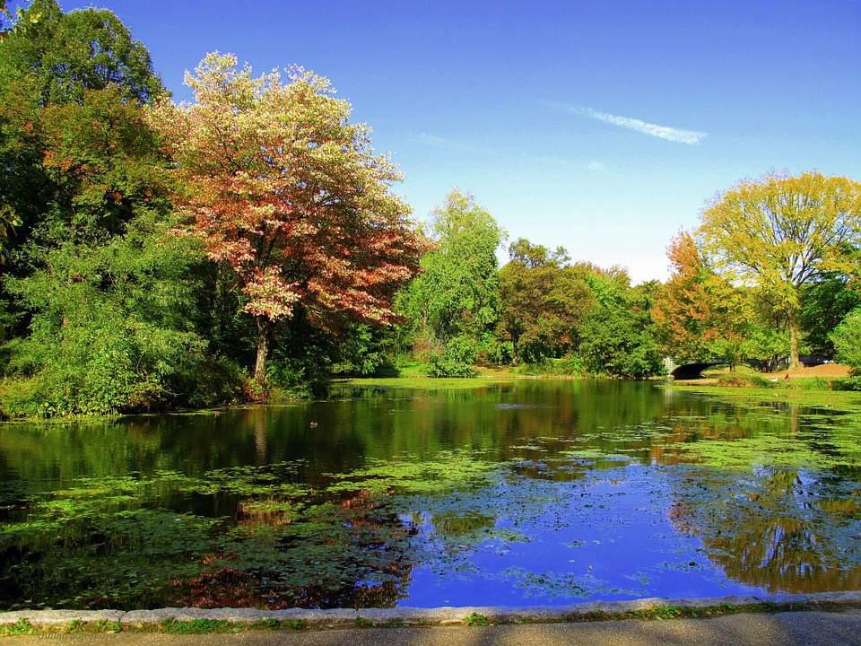 Prospect Park | Brooklyn | Outdoors & Recreation  |Prospect Park Brooklyn