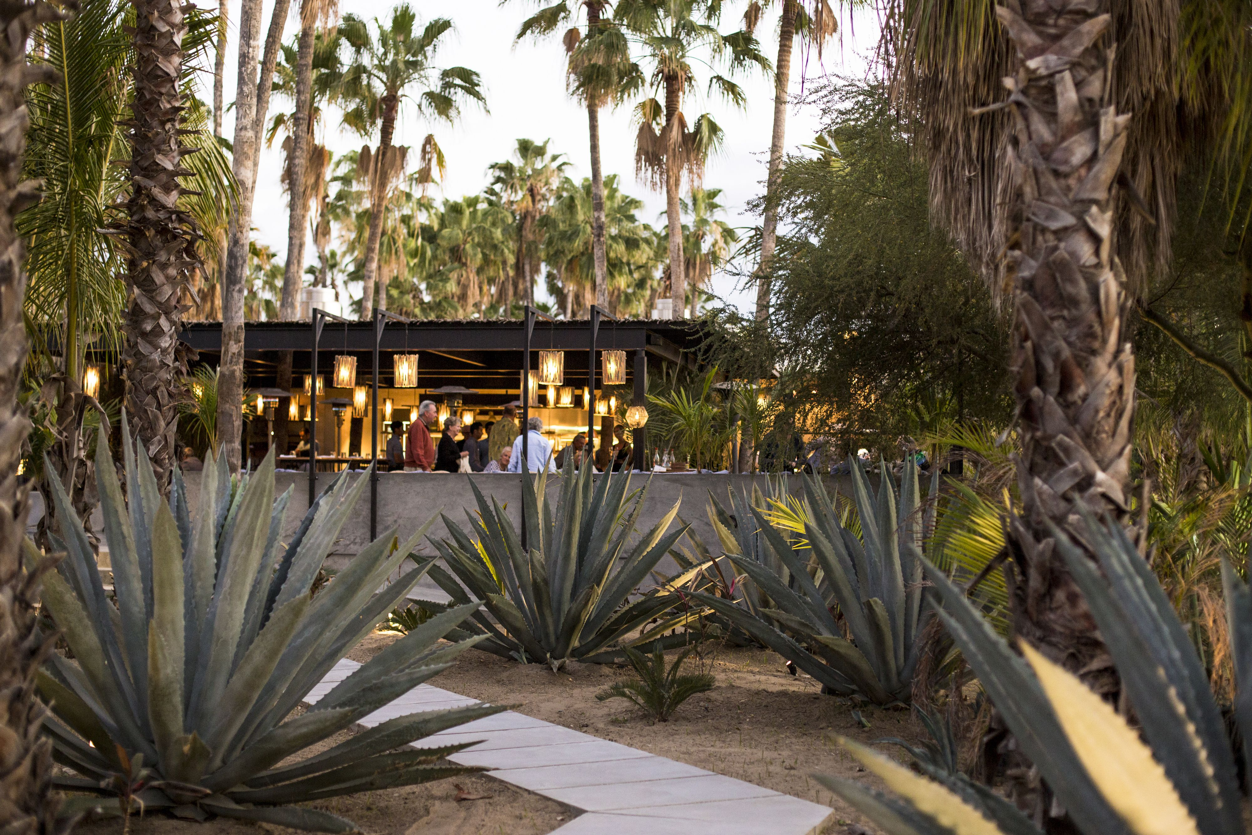 Acre bar and restaurant in Cabo San Lucas