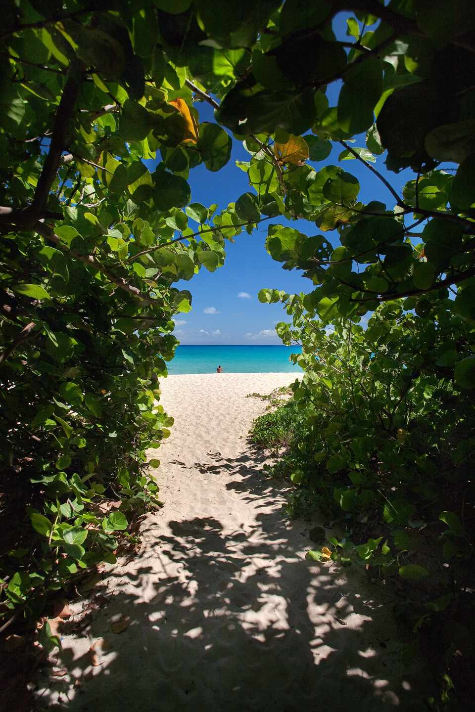 The Best Nude Beaches In The Caribbean-1311
