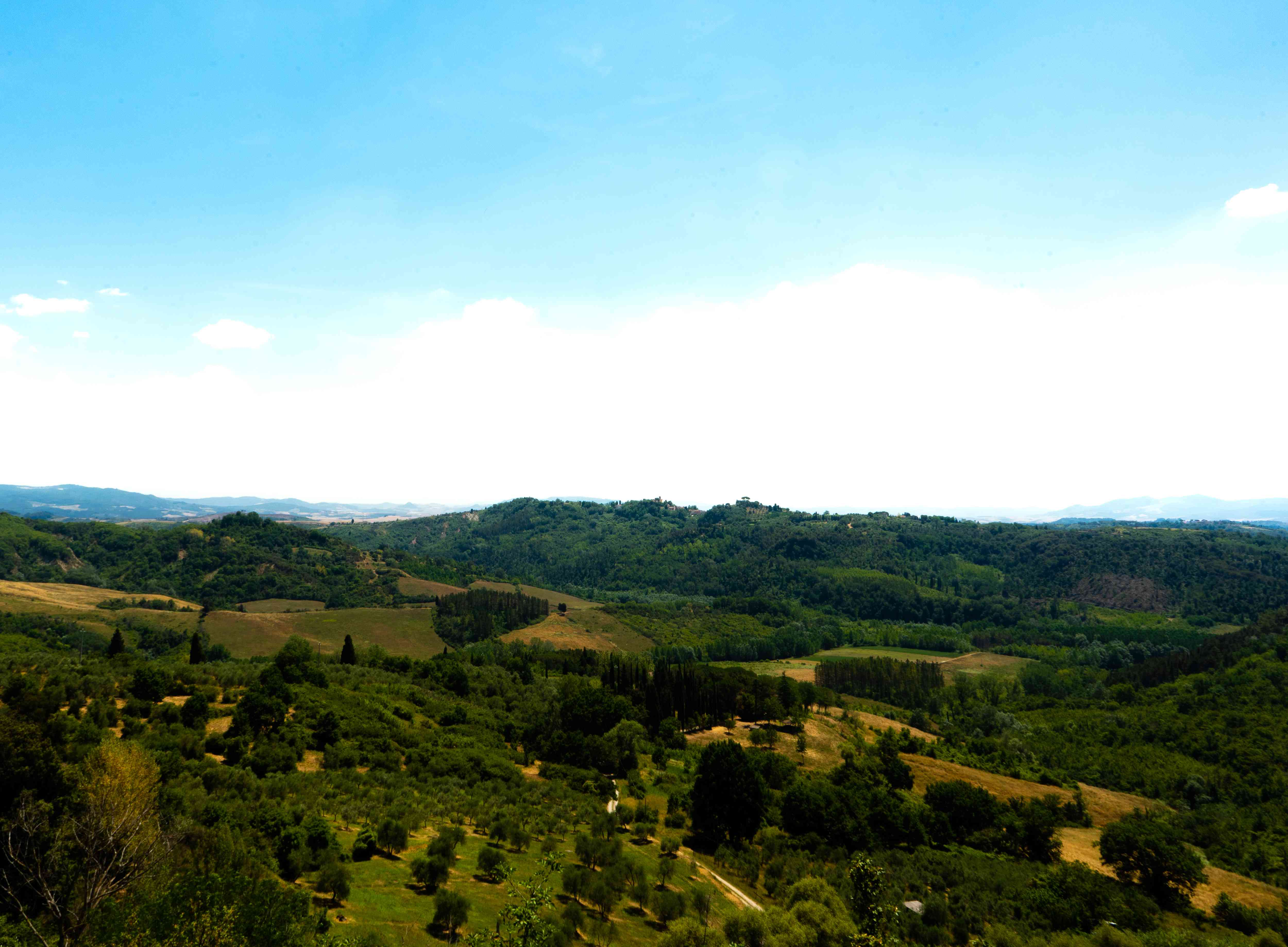 Country side of Tuscany outside of Lucca