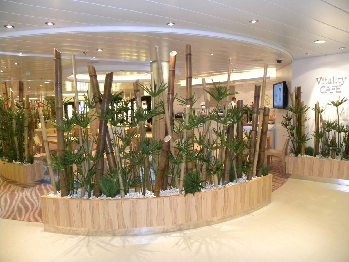 Oasis of the Seas - Vitality at Sea Spa and Fitness Center