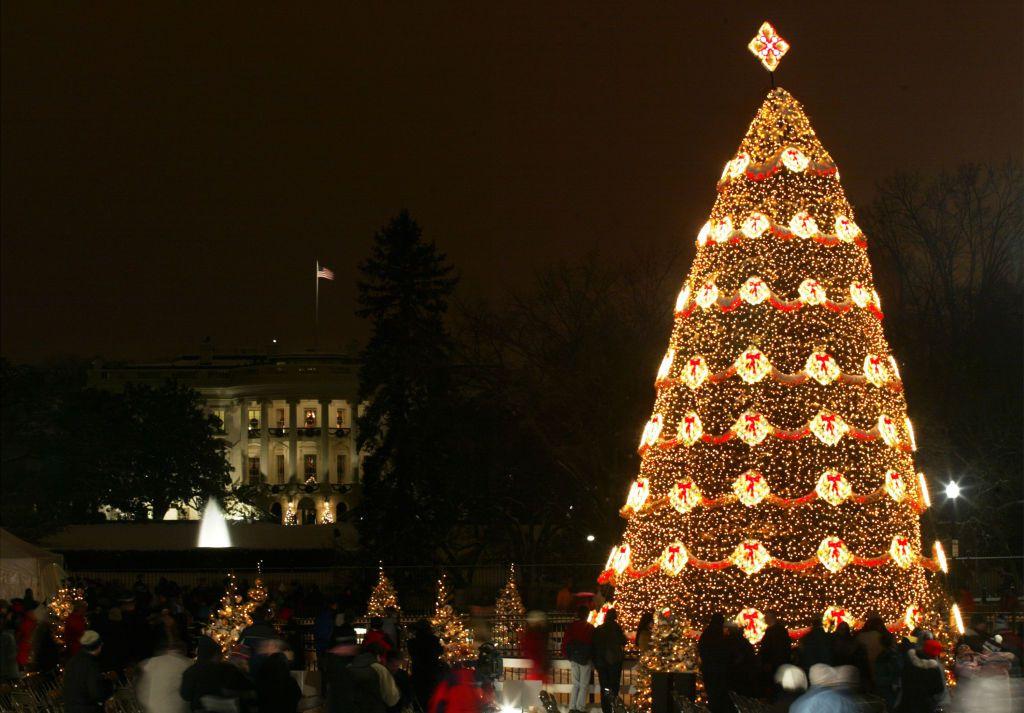 National Christmas Tre