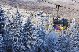 Ski gondola above the treetops, Killington Ski Resort.