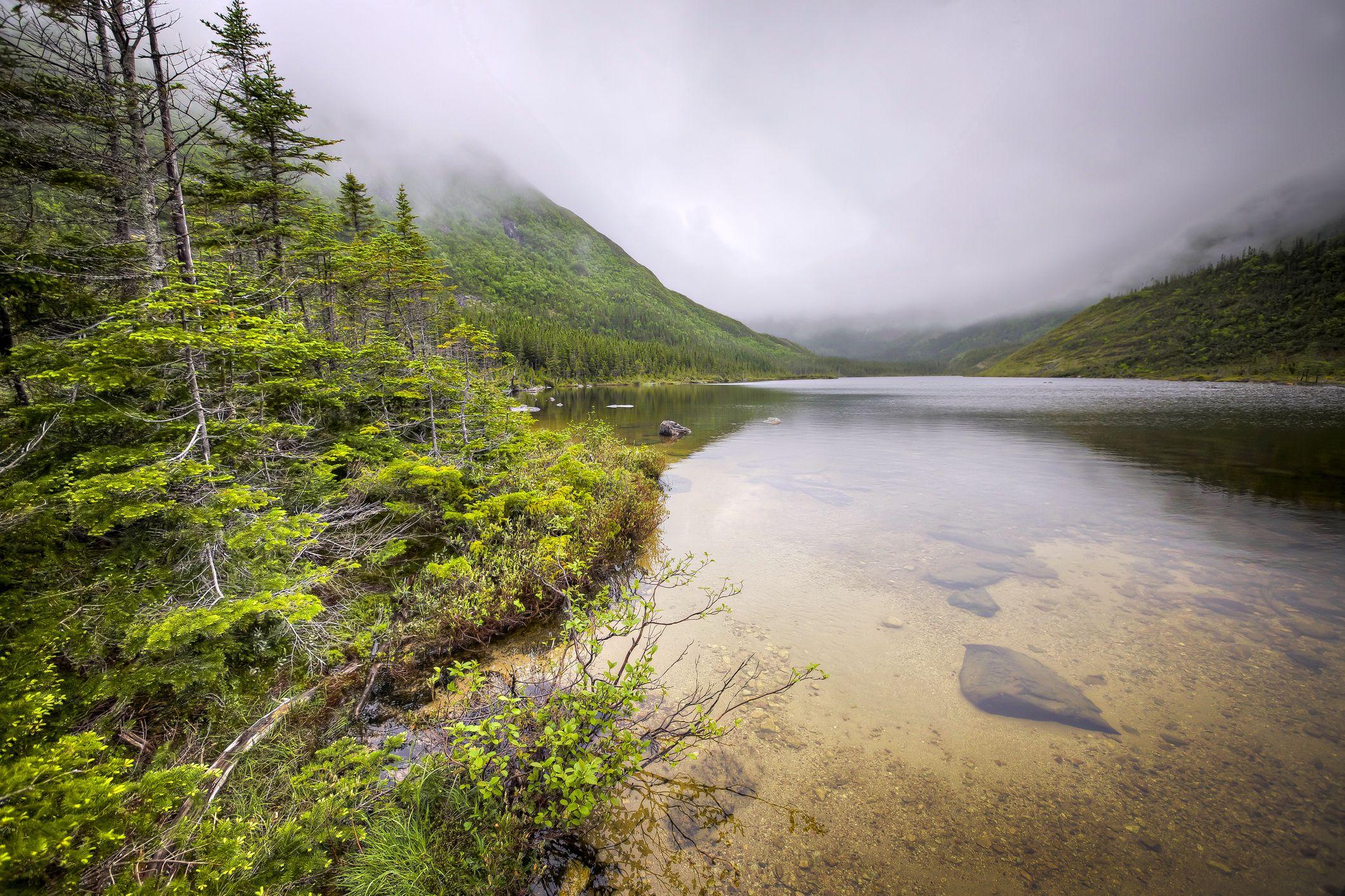Parque Nacional Gaspesie