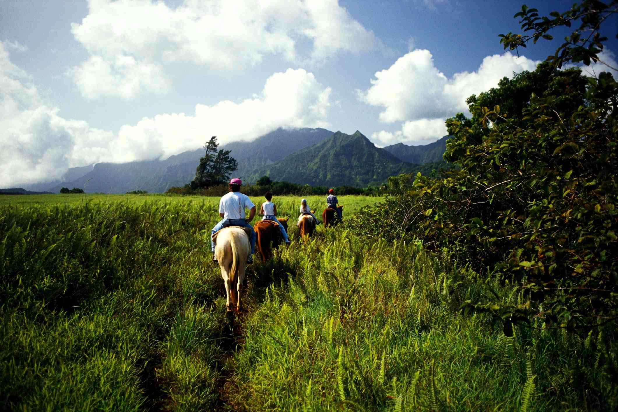 horseback riding in hanalei, view from behind island of kauai, hawaii
