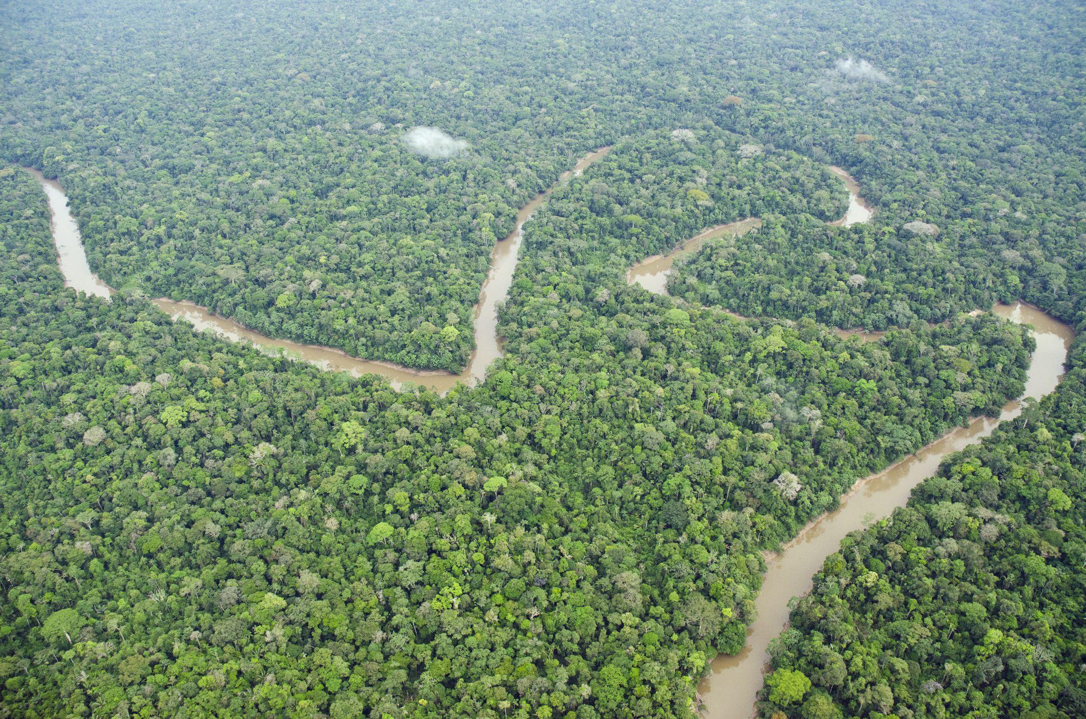 Río Tiputini y selva tropical, Parque Nacional Yasuní, selva amazónica, Ecuador, América del Sur
