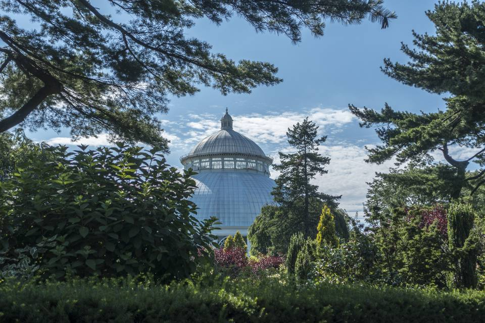 Haupt Conservatory New York Botanical Garden