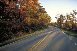 A road through fall foliage