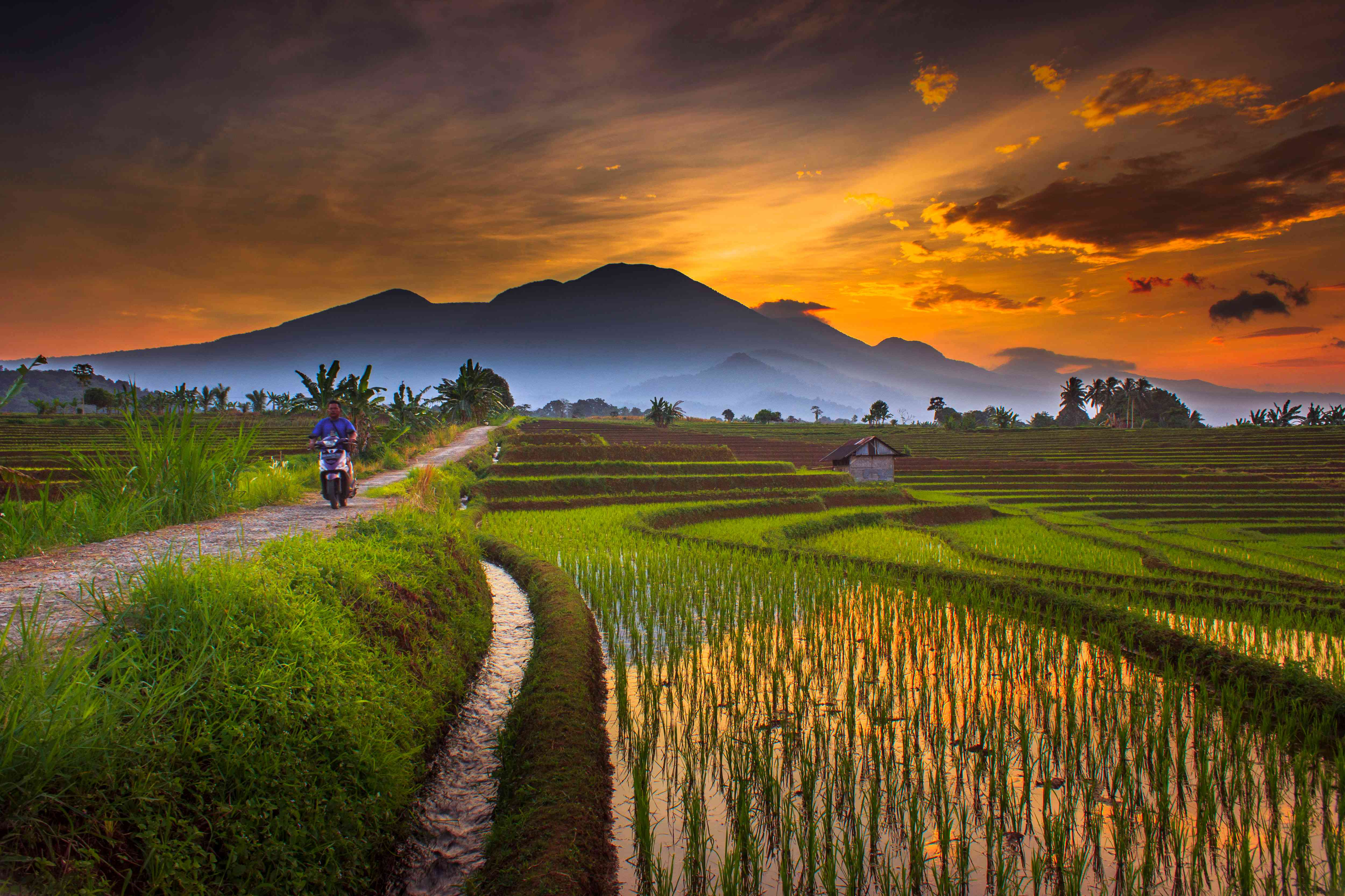 Driving at sunset in Bengkulu, South Sumatra