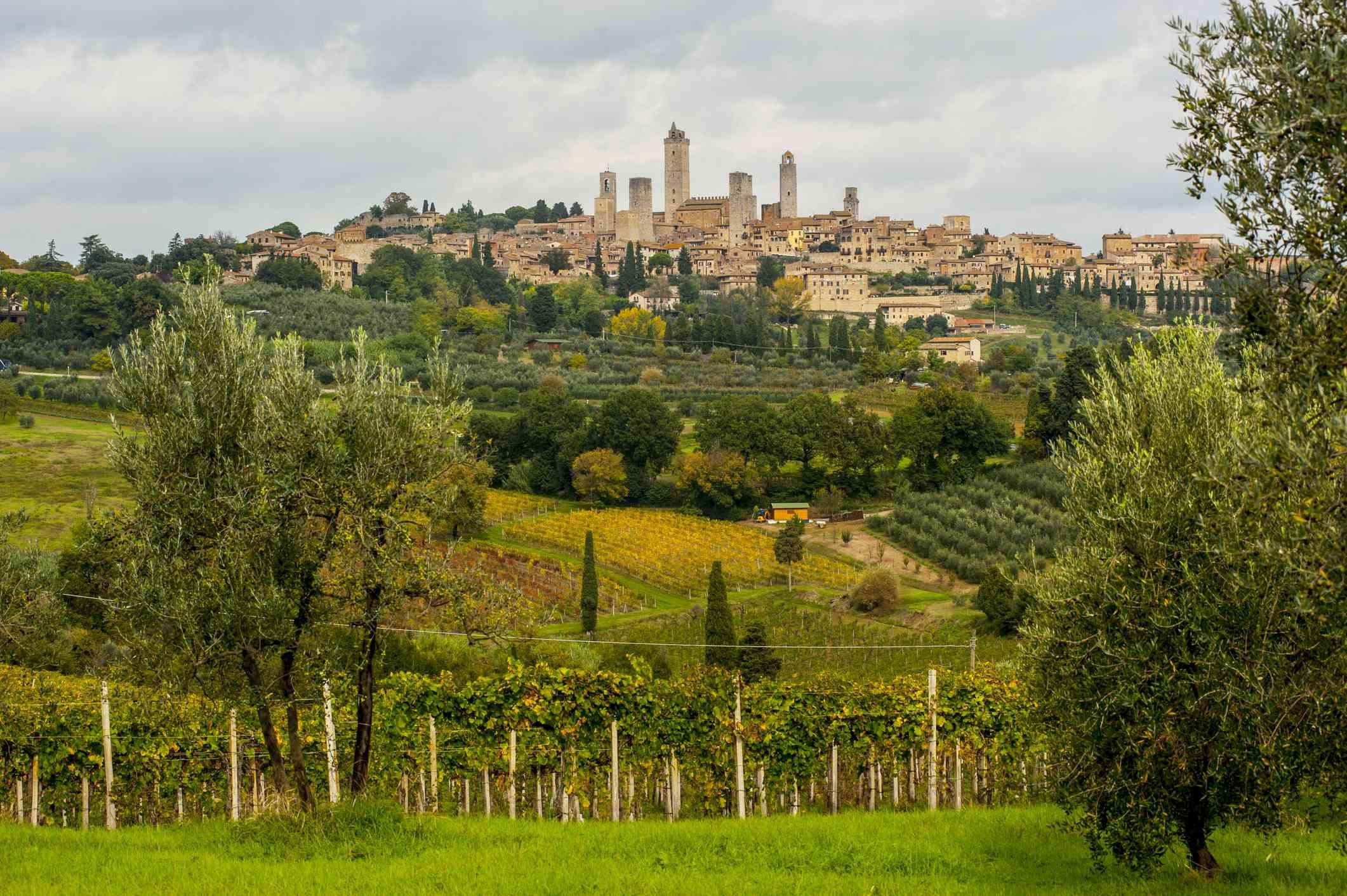 On the Via Francigena pilgrim route in Tuscany