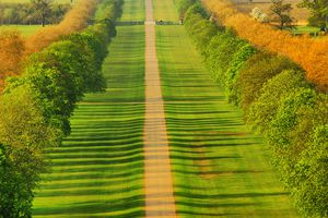A photograph of the long path, that leads from Windsor Castle to the King George III equestrian statue on Snow Hill in Windsor Great Park.