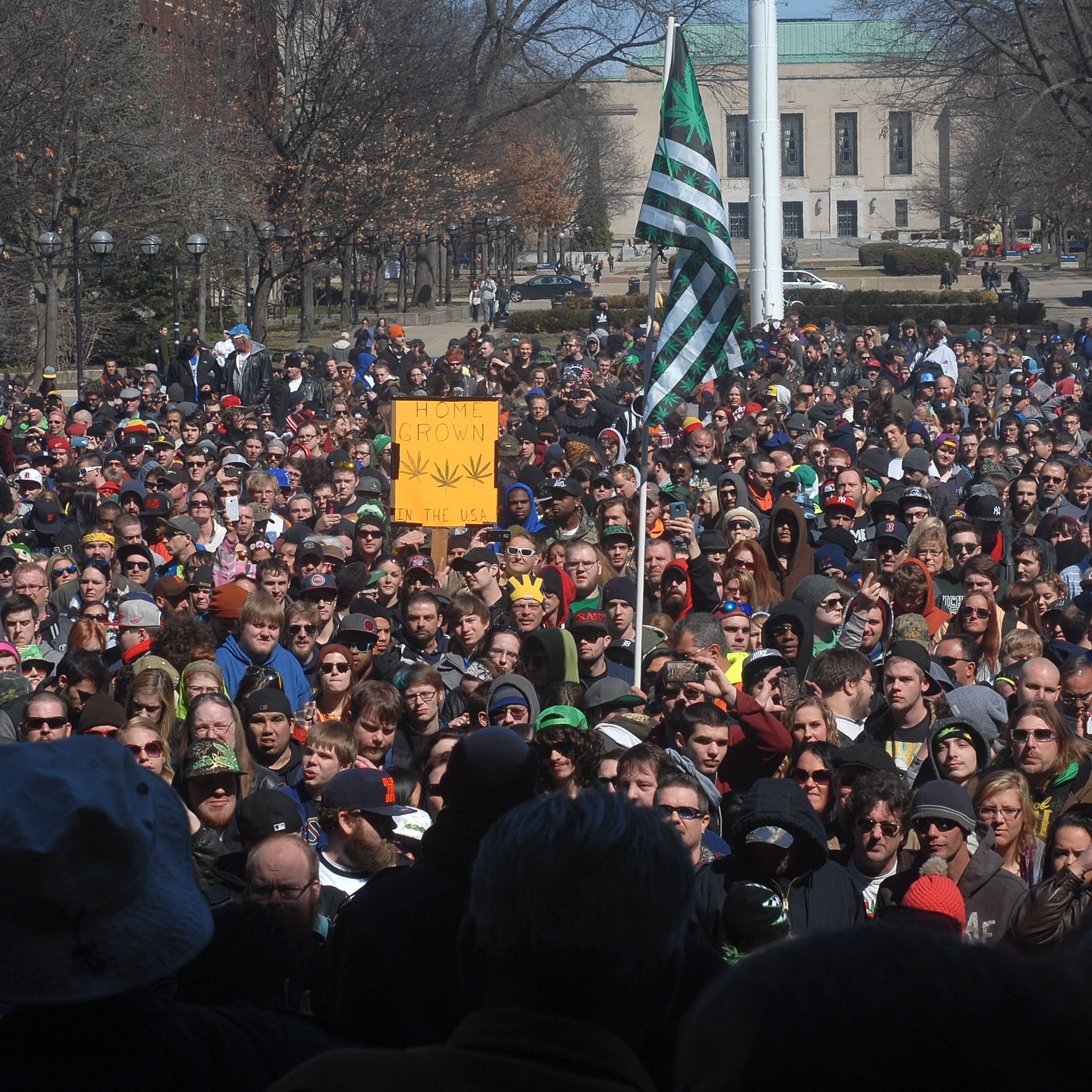 Ann Arbor's Hash Bash: The Complete Guide