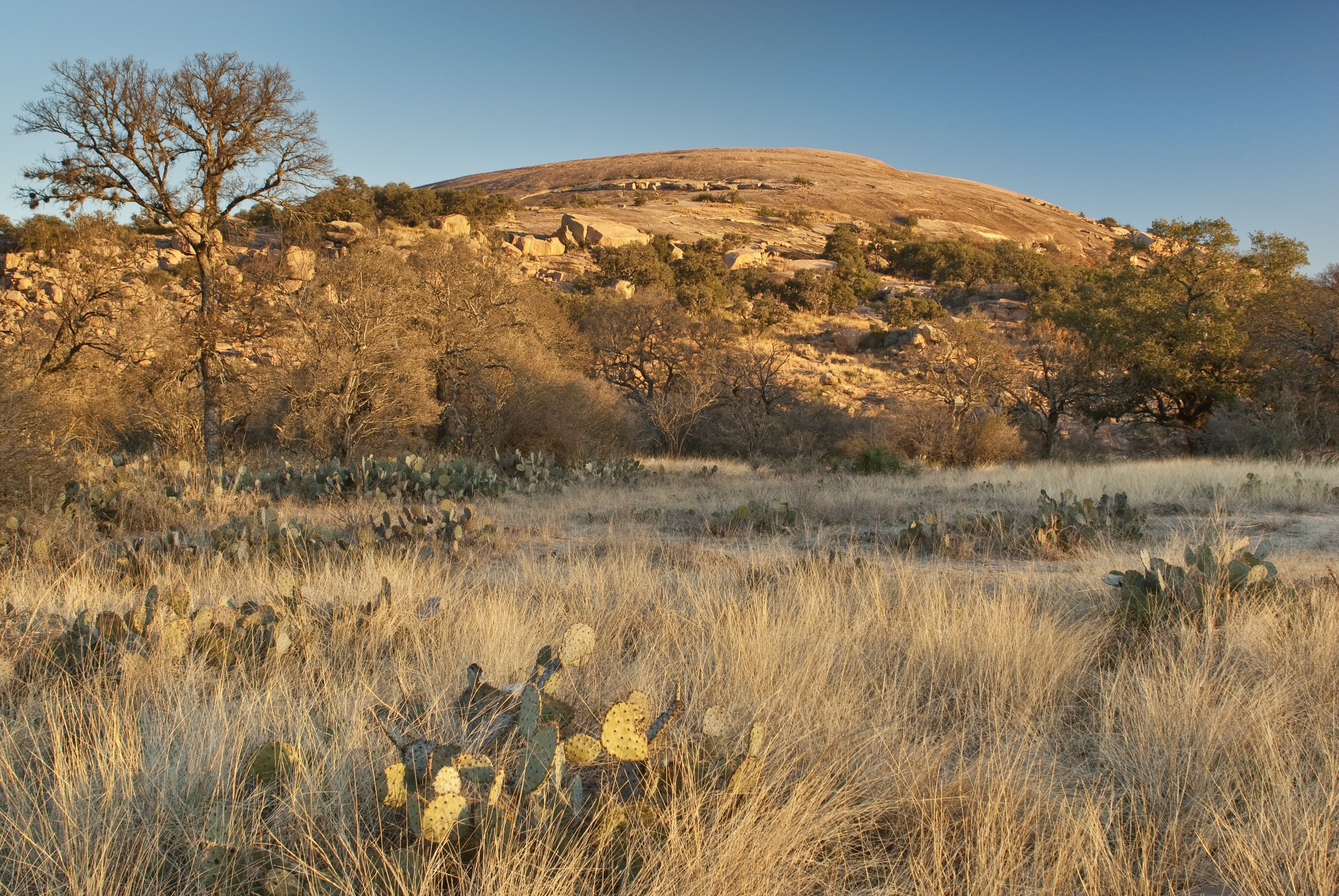 Main Dome at sunrise, Enchanted Rock State Natural Area, in Hill Country near Fredericksburg.
