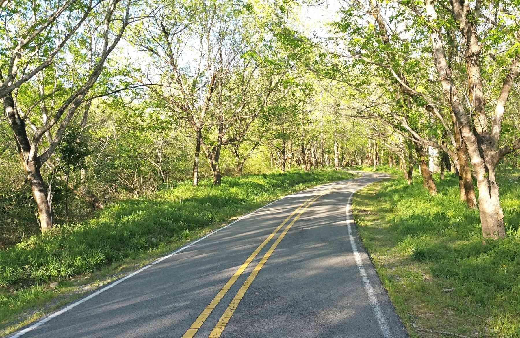 Shades Creek Parkway