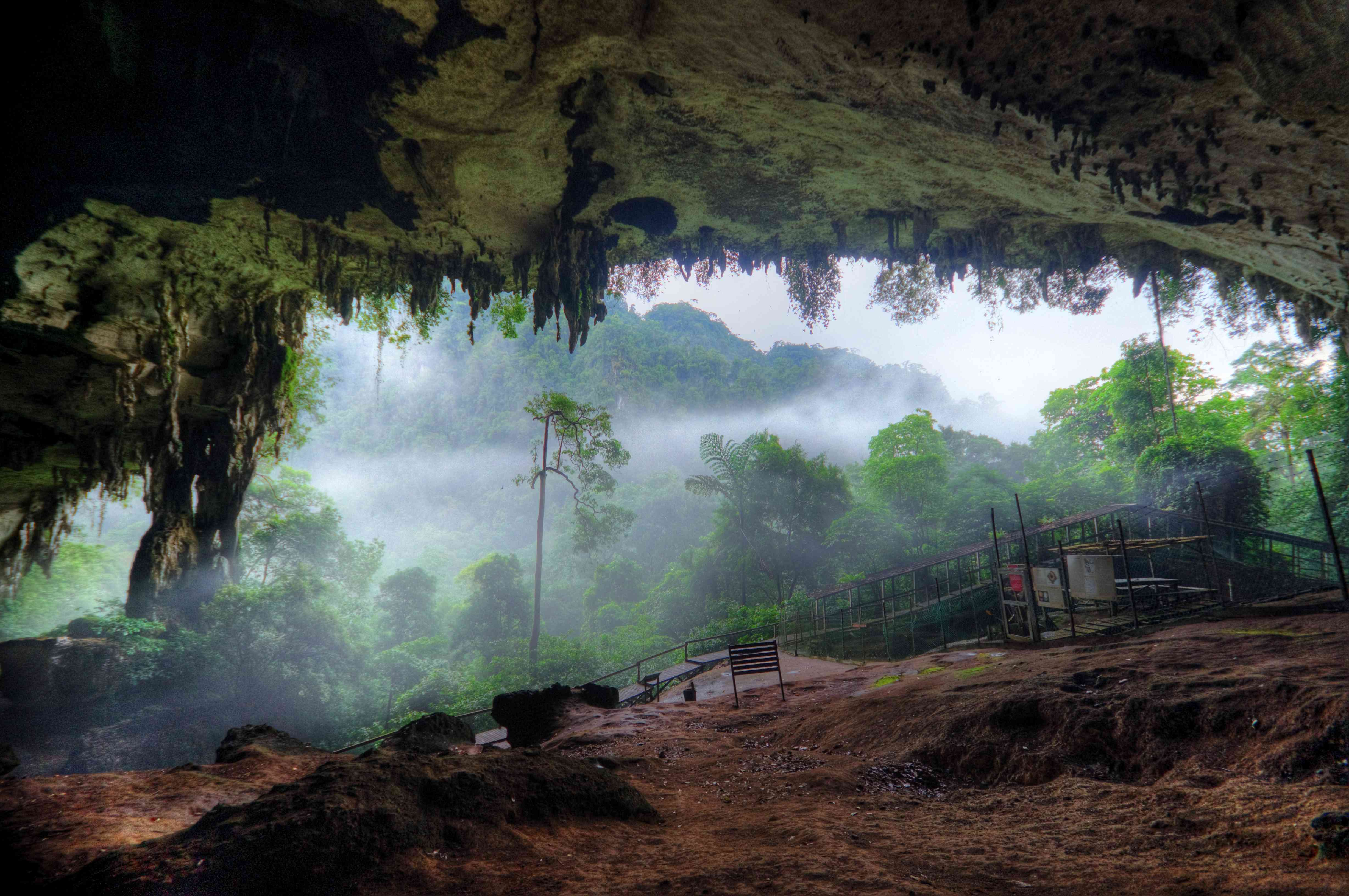 Large cave and rainforest at Niah National Park in Borneo