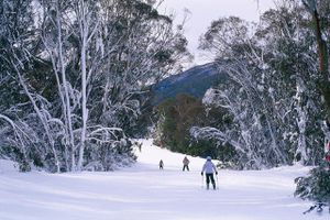 Ski trail down to Friday Flat, Thredbo, New South Wales