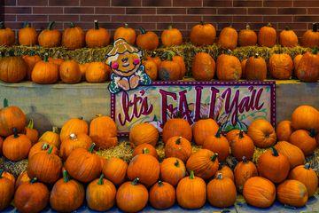 Halloween display in Columbus, Ohio