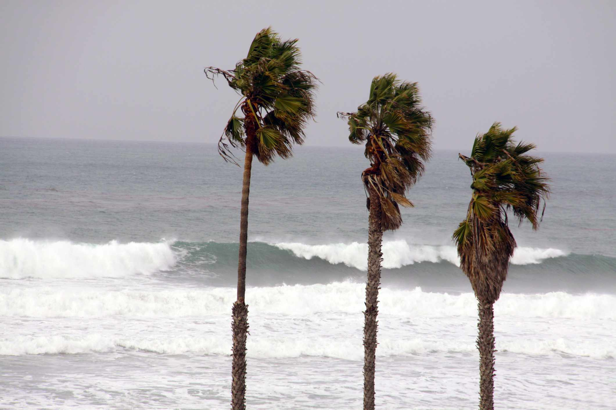 wind and surf in San Diego County
