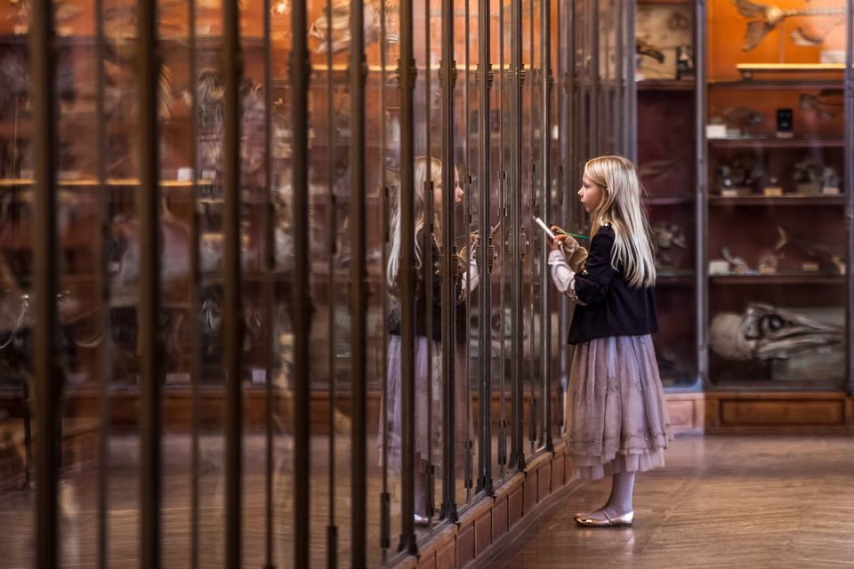 Side View Of Girl Standing With Reflection At National Museum Of Natural History