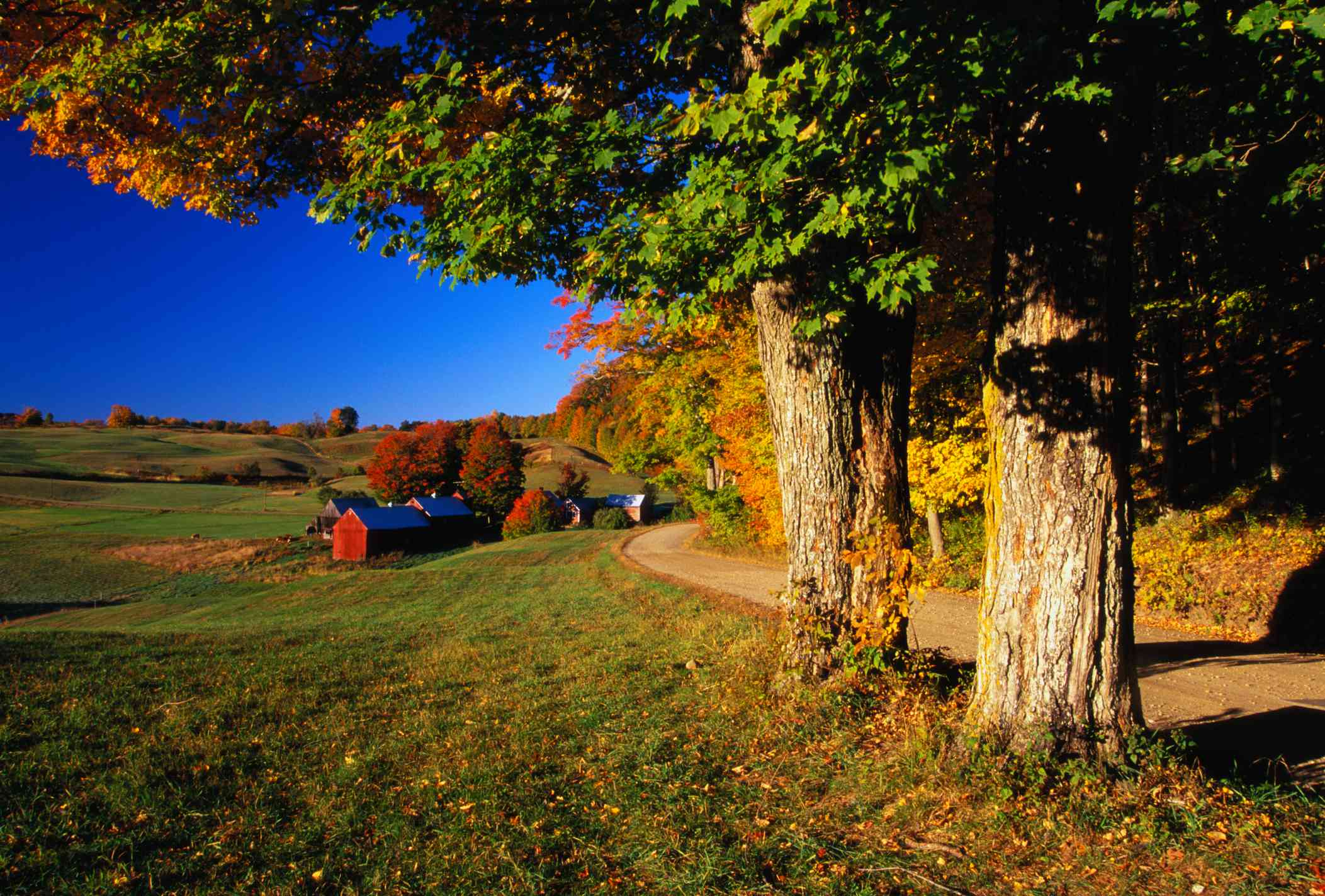 Vermont Jenne Farm in Autumn