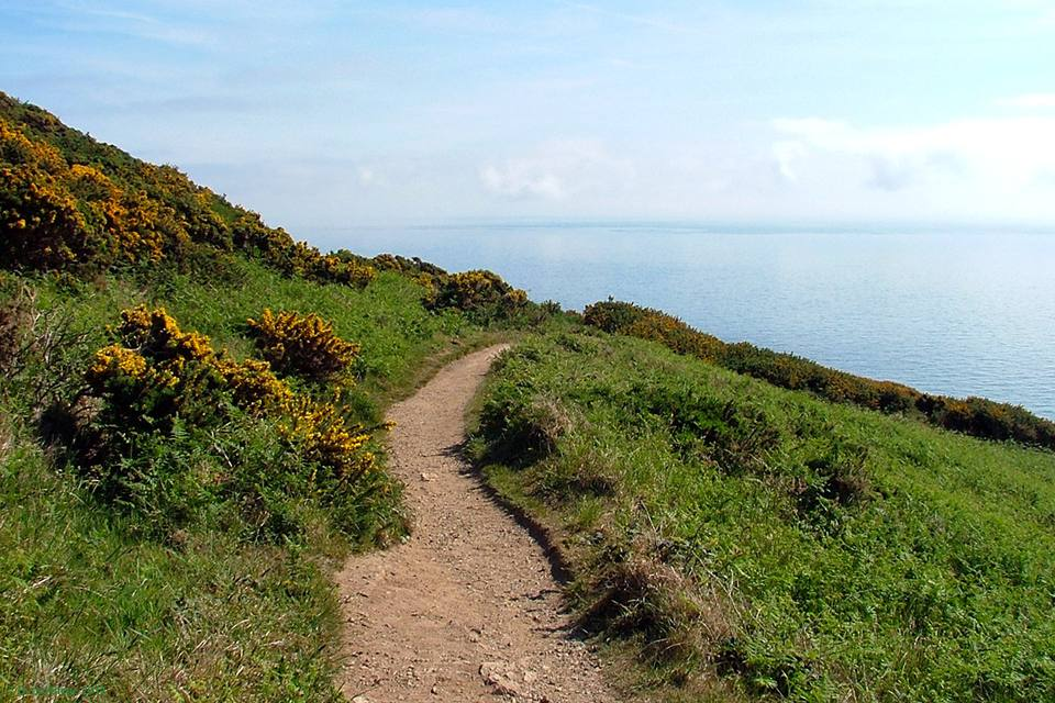Walking The Howth Cliff Path Loop