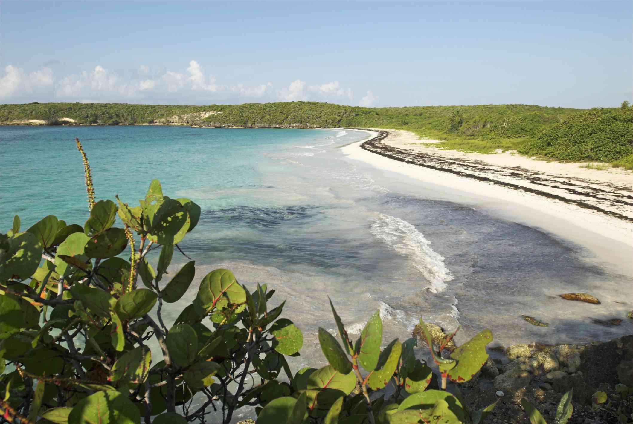 Garcia Beach, Vieques Island, Puerto Rico