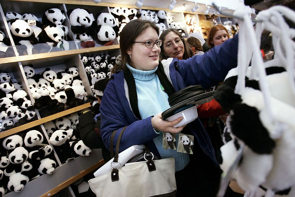 Visitors Flock To See Smithsonian Zoo's Newest Panda Cub