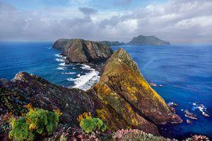 Anacapa Island, Channel Islands National Park, California, USA