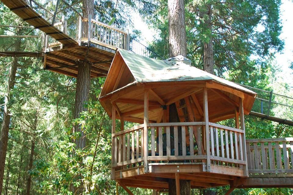 treehouse. Out\u0027n\u0027About Treehouses Treehouse