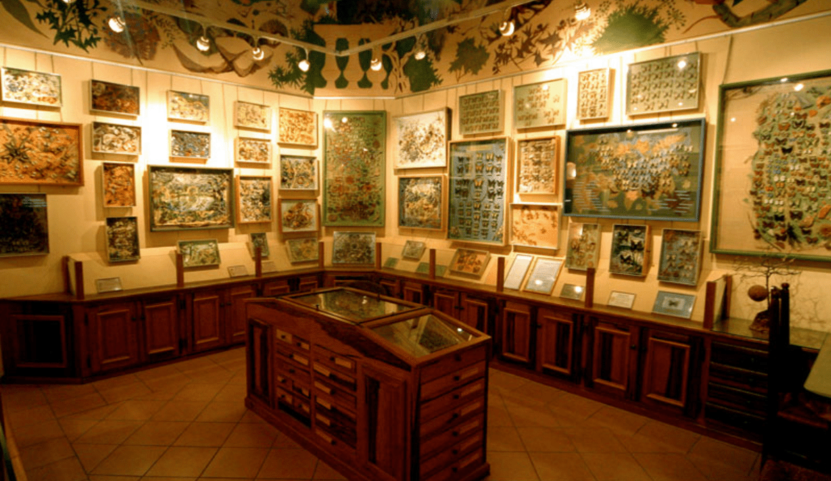 Maison des Papillons, Saint-Tropez