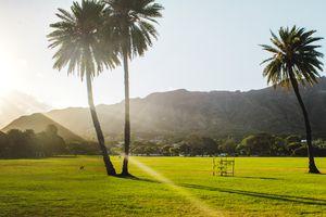 Queen Kapiolani Park during sunrise