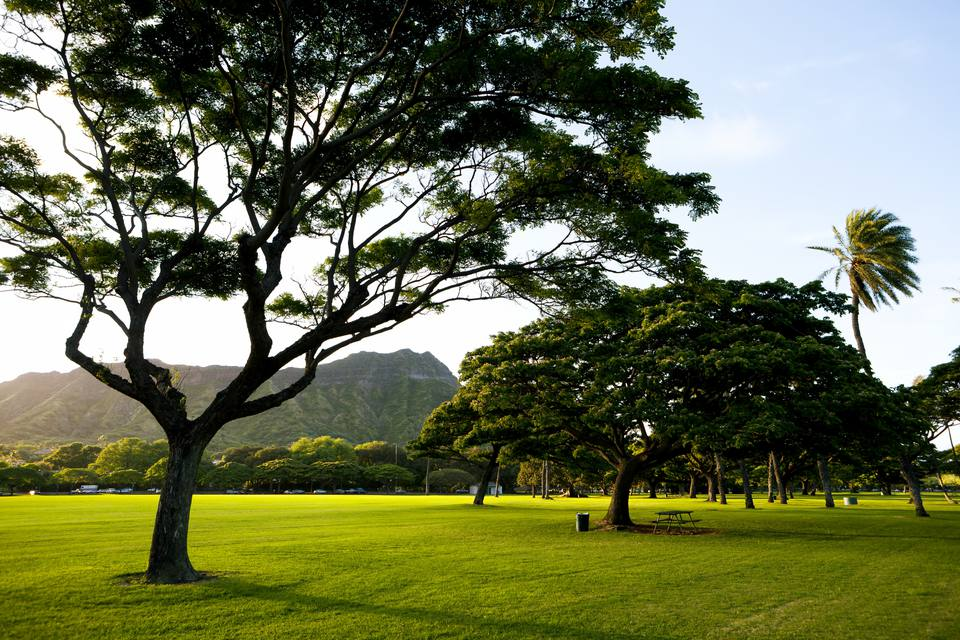 Hawaii, Oahu, Waikiki, Kapiolani Park Just Before Sunset