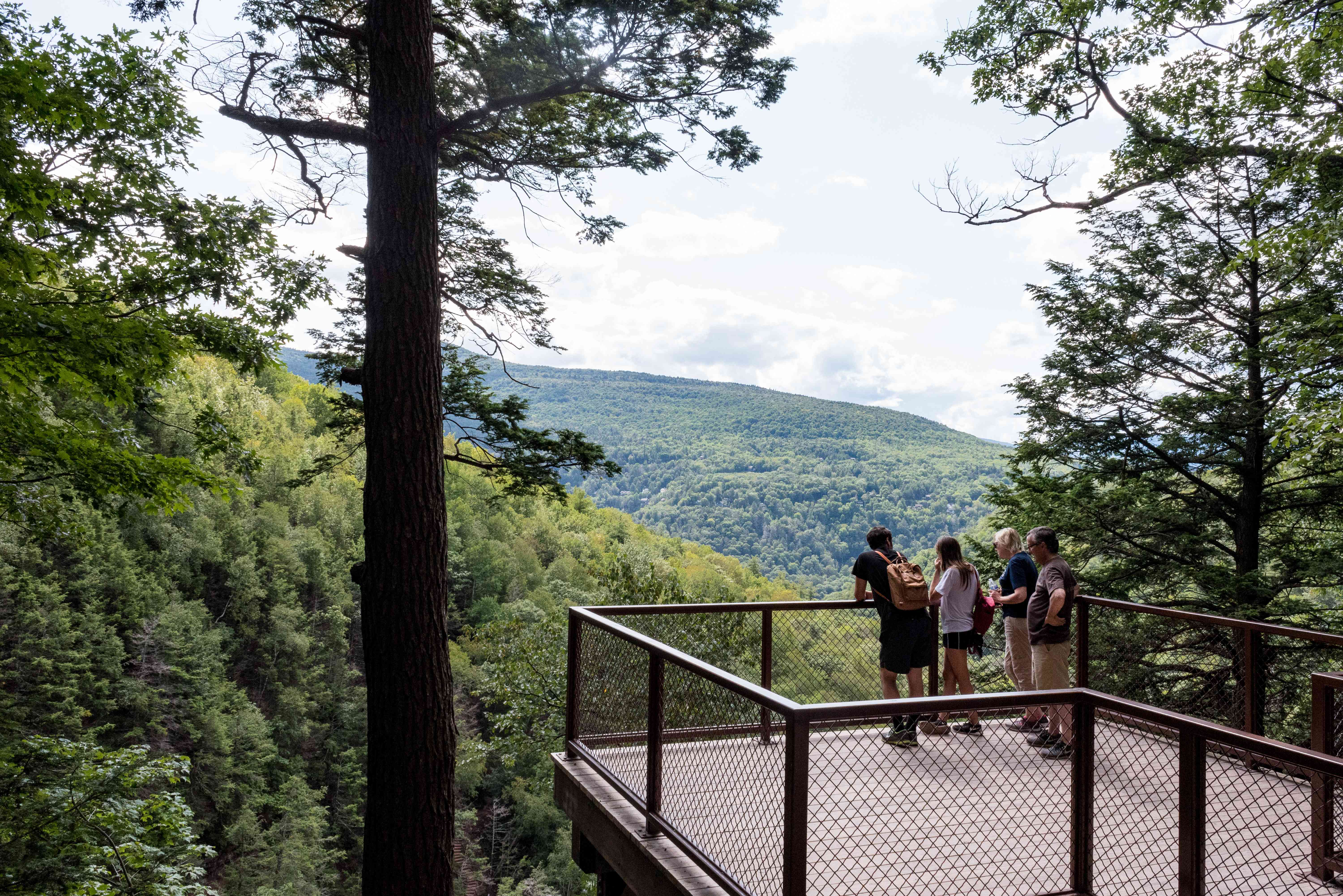 A lookout point on the Kaaterskill Falls hike